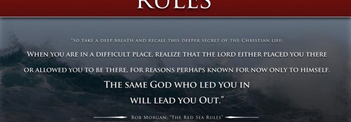 Book Review Red Sea Rules