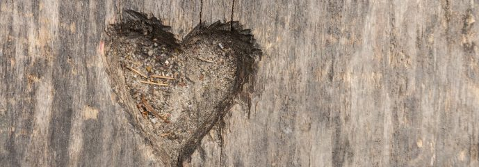 From the Heart: Loving That Person I Still Don't Like