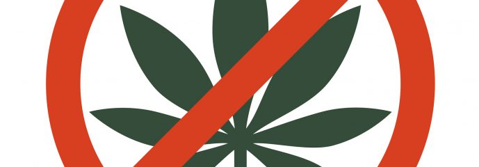 Legalizing Medical Marijuana: Don't Let the Genie Out of the Bottle