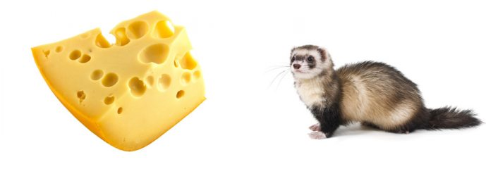 Off-the-Cuff: Cheese Weasel Day is April 3rd!